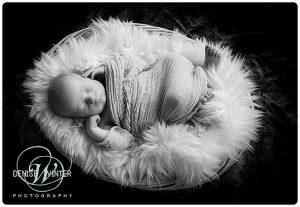 Newborn-photographer-Ascot-Toby029